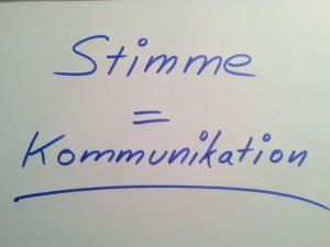 Stimme ist gleich Kommunikation